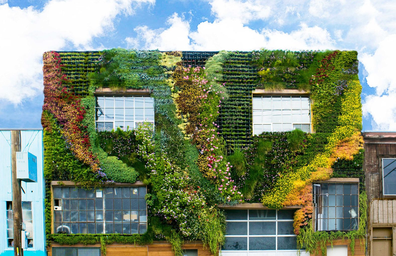 planted-design-living-wall-lead